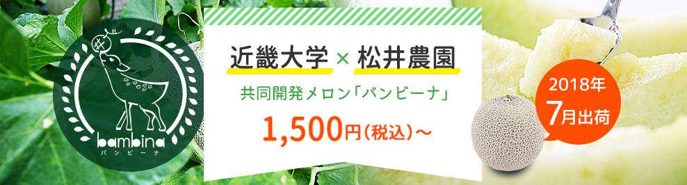 近畿大学×松井農園 共同開発メロン「バンビーナ」販売開始!
