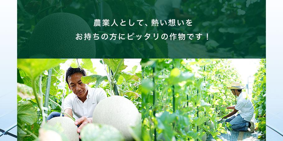 農業人として、熱い想いをお持ちの方にピッタリの作物です!