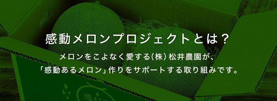 感動メロンプロジェクトとは?メロンをこよなく愛する㈱松井農園が、「感動あるメロン」作りをサポートする取り組みです。