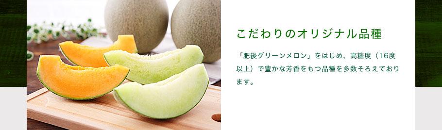 こだわりのオリジナル品種 「肥後グリーンメロン」をはじめ、高糖度(16度以上)で豊かな芳香をもつ品種を多数そろえております。